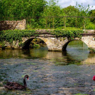 One Day Escape – Bibury & Oxford