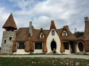 castle-wing