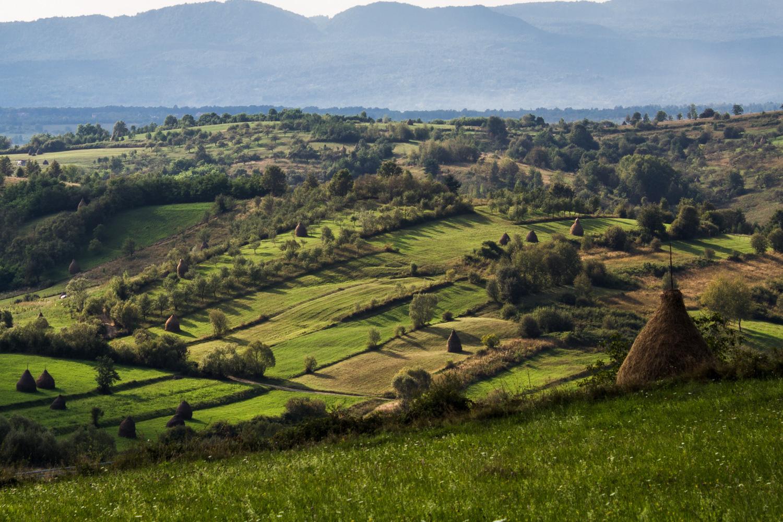 Haystack in Maramures
