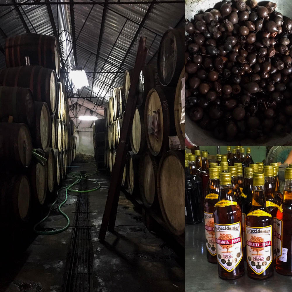 Inside the Rum Factory