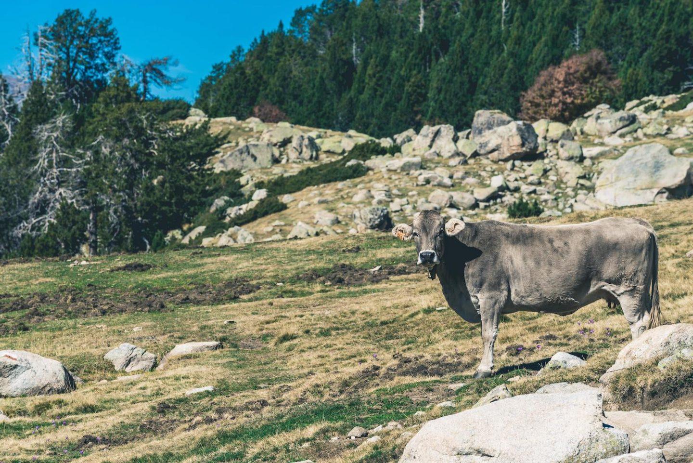 3 days in Andorra