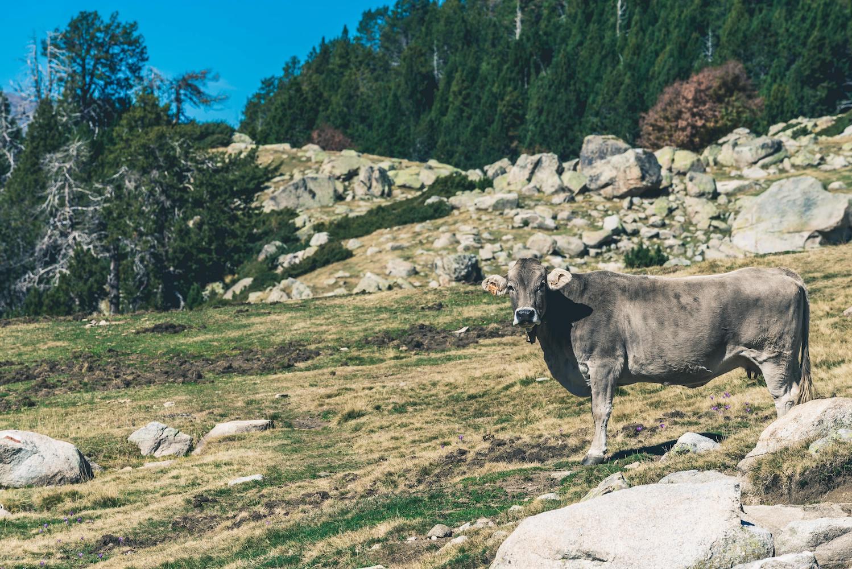 La Maiana Pass Andorra