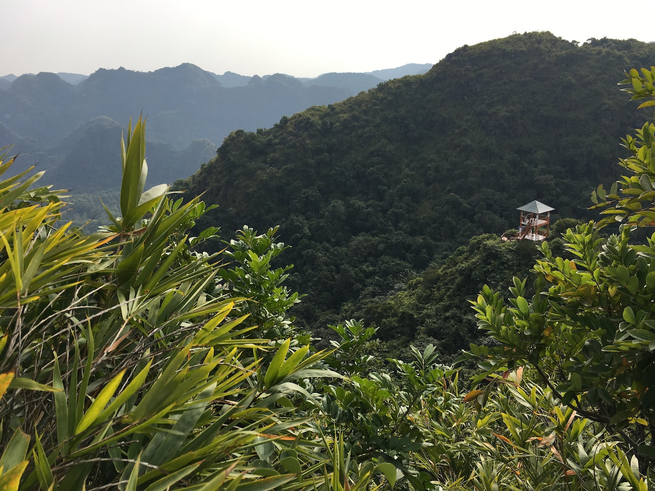View point Cat Ba National Park